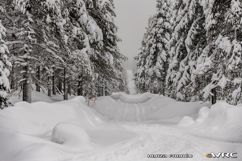 WRC: Arctic Rally Finland - Powered by CapitalBox [26-28 Febrero] - Página 2 Hfr_dsc_0703